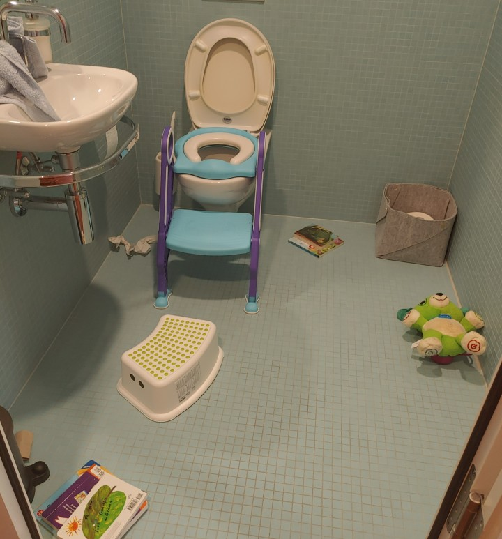 My First Week Potty Training my 2-Year-Old